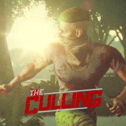 Системные требования The Culling