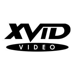 Системные требования Xvid Codec